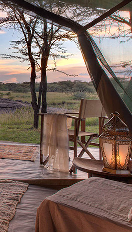 Contact Us - F  Kings Tours and Safaris Kenya Limited