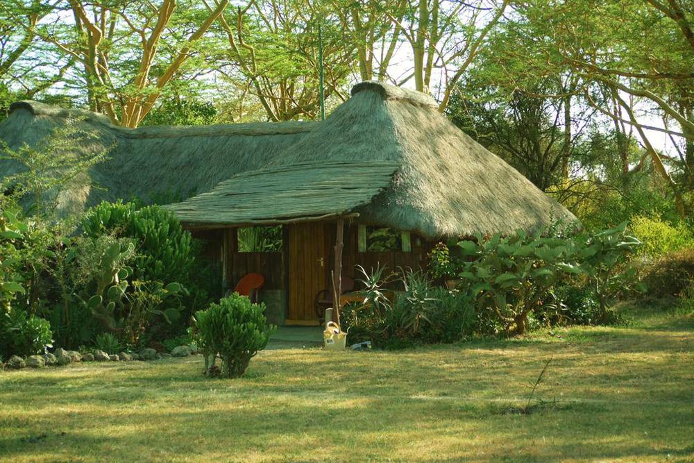 Acacia Camp, Swara Plains