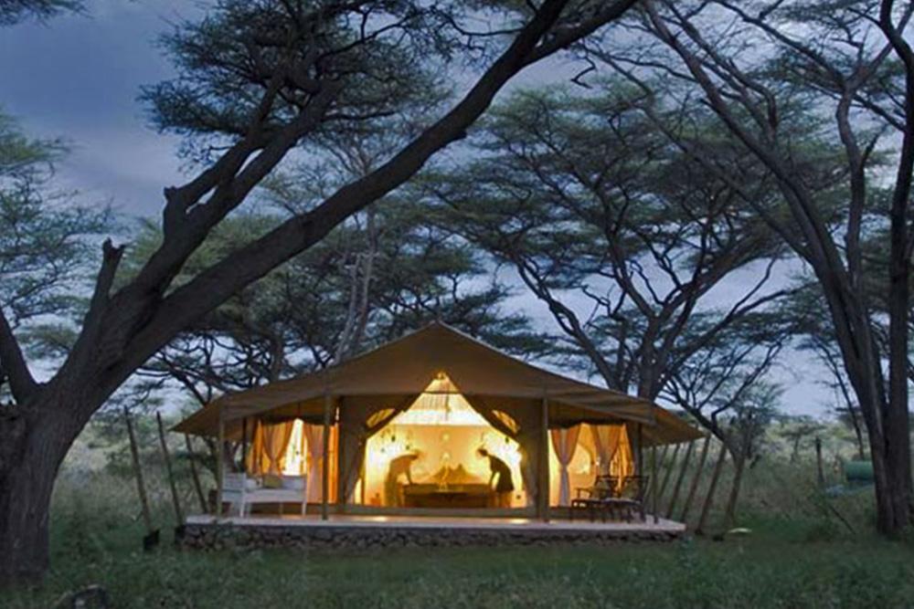Joy Camp (Shaba National Reserve)