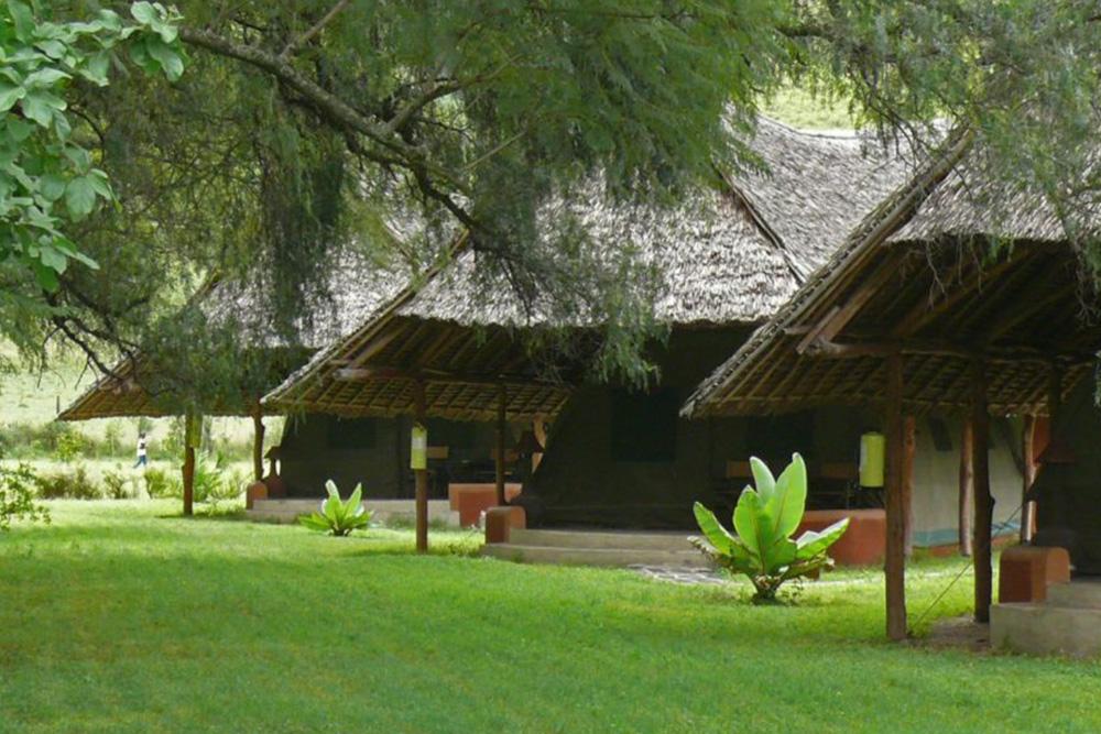Flamingo Hill Camp