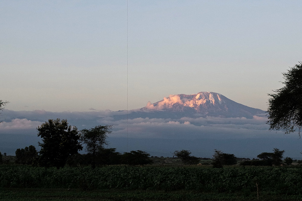 2 Days Aberdare National Park or Mount Kenya National Park (Nairobi)