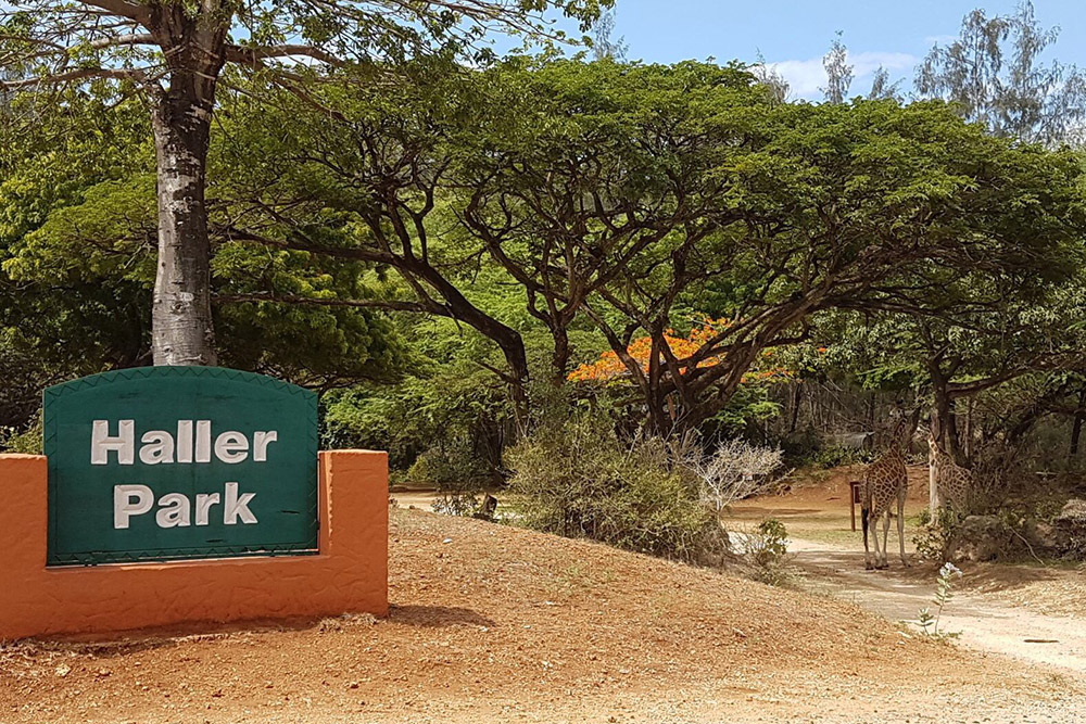 Haller Park, Mombasa Excursion