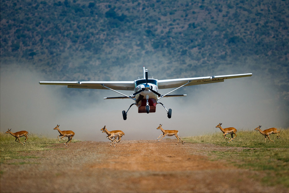 3 Days Samburu ( By Flight from Nairobi )