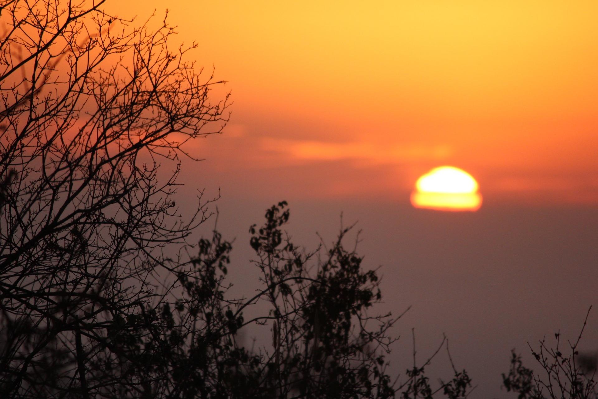 1 .5 Days Tsavo East and Ngutuni Santuary