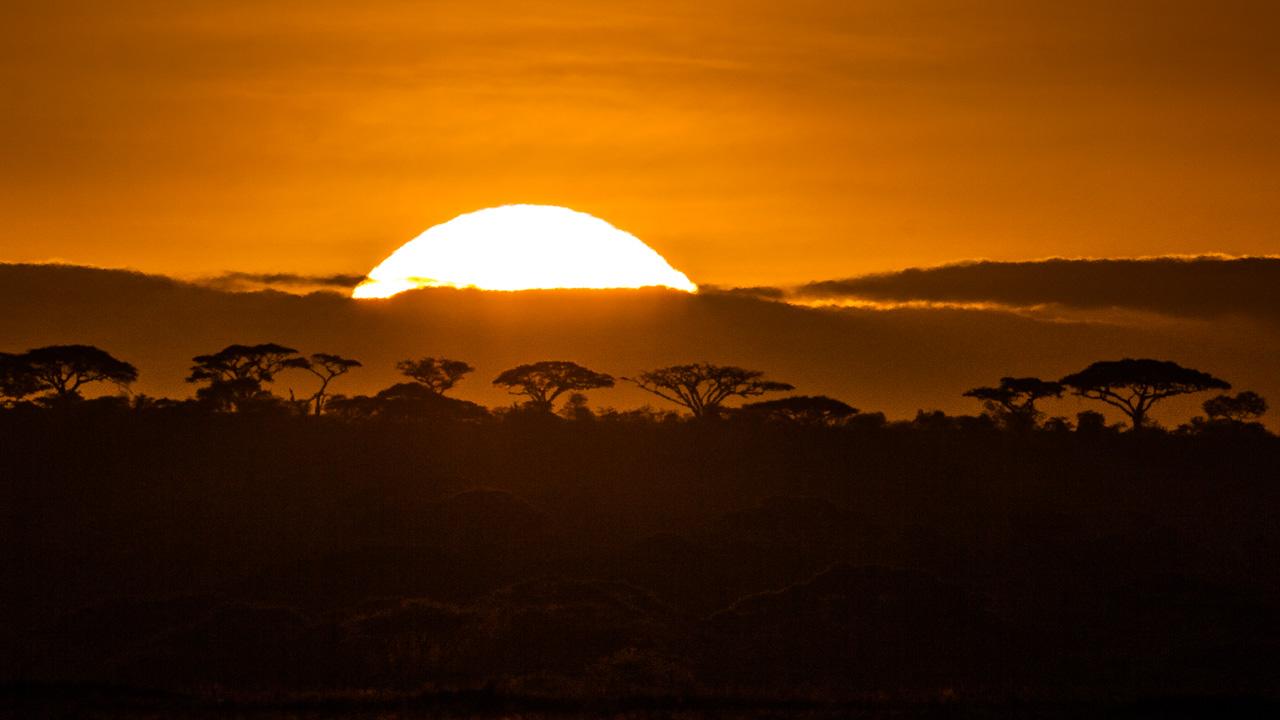7 Days Tarangire, Manyara,Serengeti,Ngorongoro