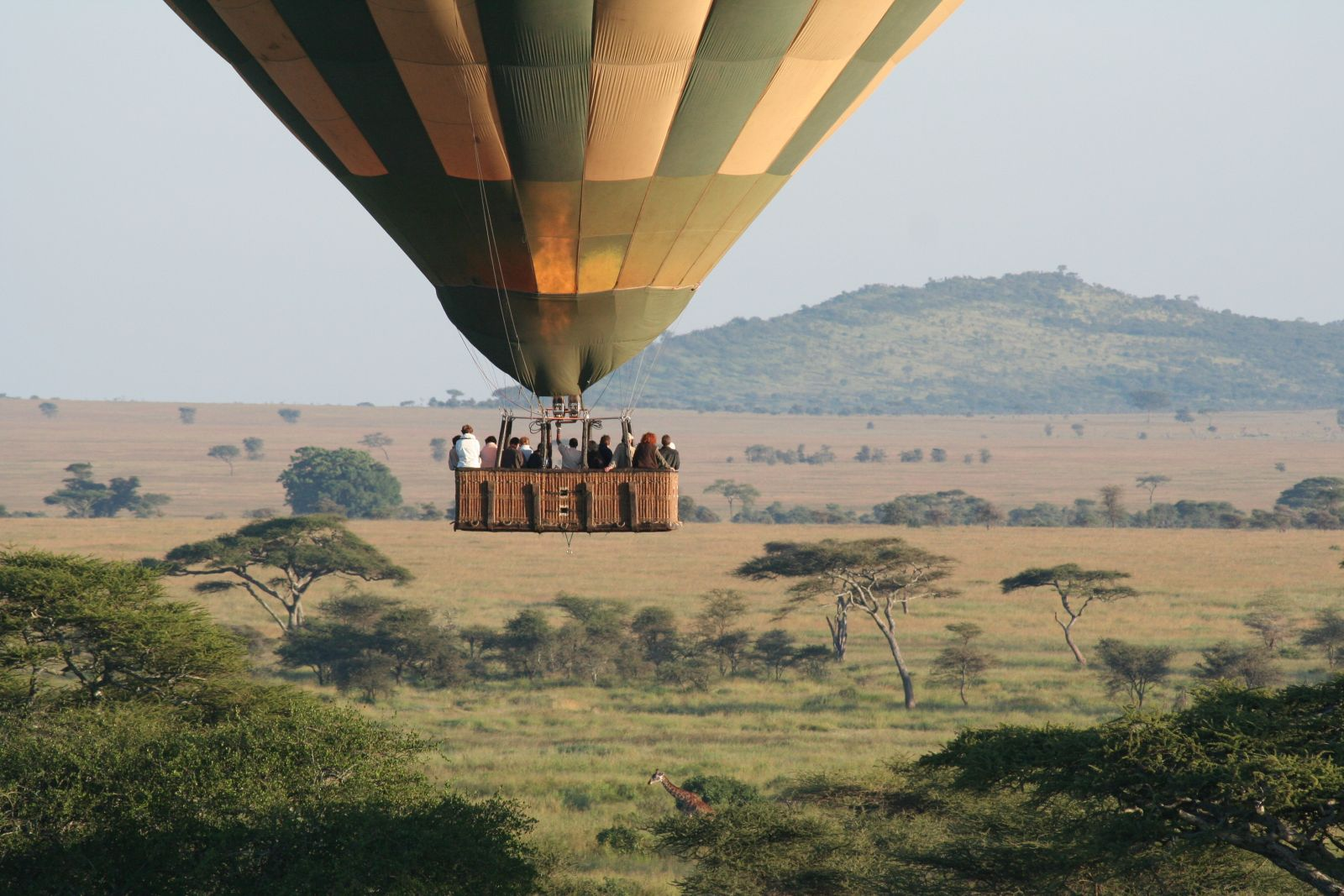 Mara Hot Air Baloon Safari