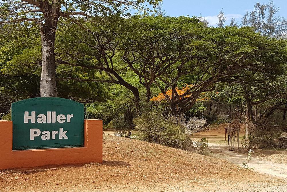 Haller Park Mombasa Excursion