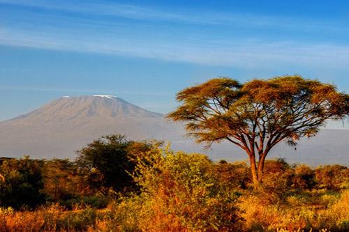 Day 2: Tsavo East - Amboseli